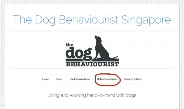 TDB Website