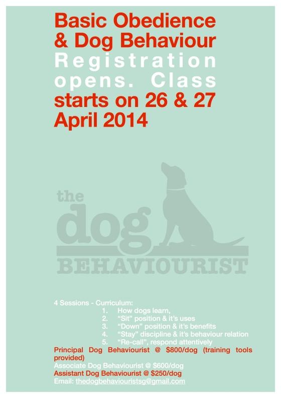 Basic-O April 2014