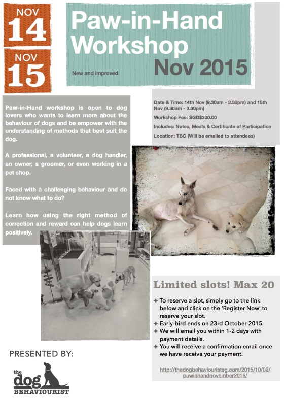 Paw-in-Hand Workshop Nov 2015